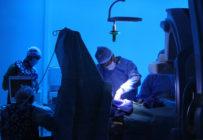 Les internes critiquent la réforme de la formation en neuroradiologie interventionnelle
